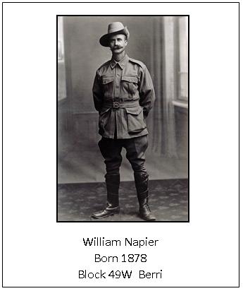 W Napier